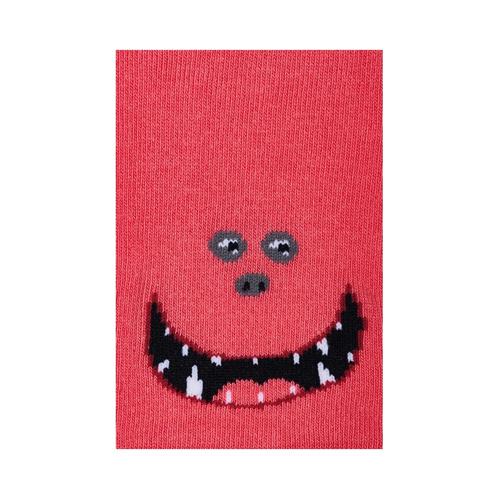 """Vaikų kojinės """"Monstrai Mamaisa ir Nanaisa"""" 3"""