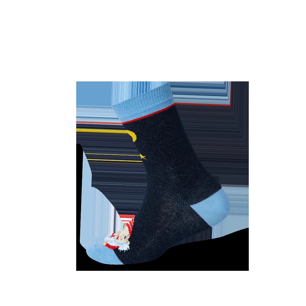 """Vaikų kojinės """"Netvarkos Nykštukas"""" 2"""