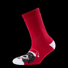 """Moterų kojinės """"Kalėdinis zenenhundas"""""""