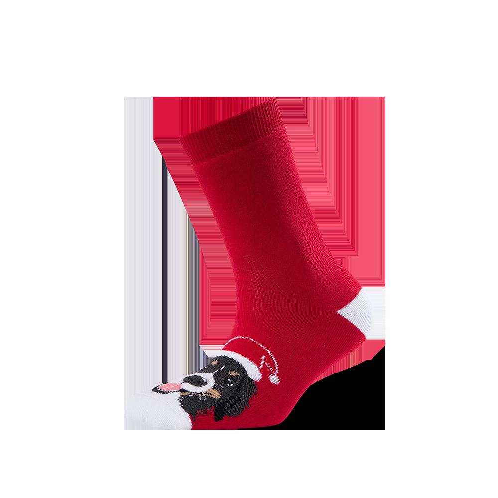 """Moterų kojinės """"Kalėdinis zenenhundas"""" 1"""