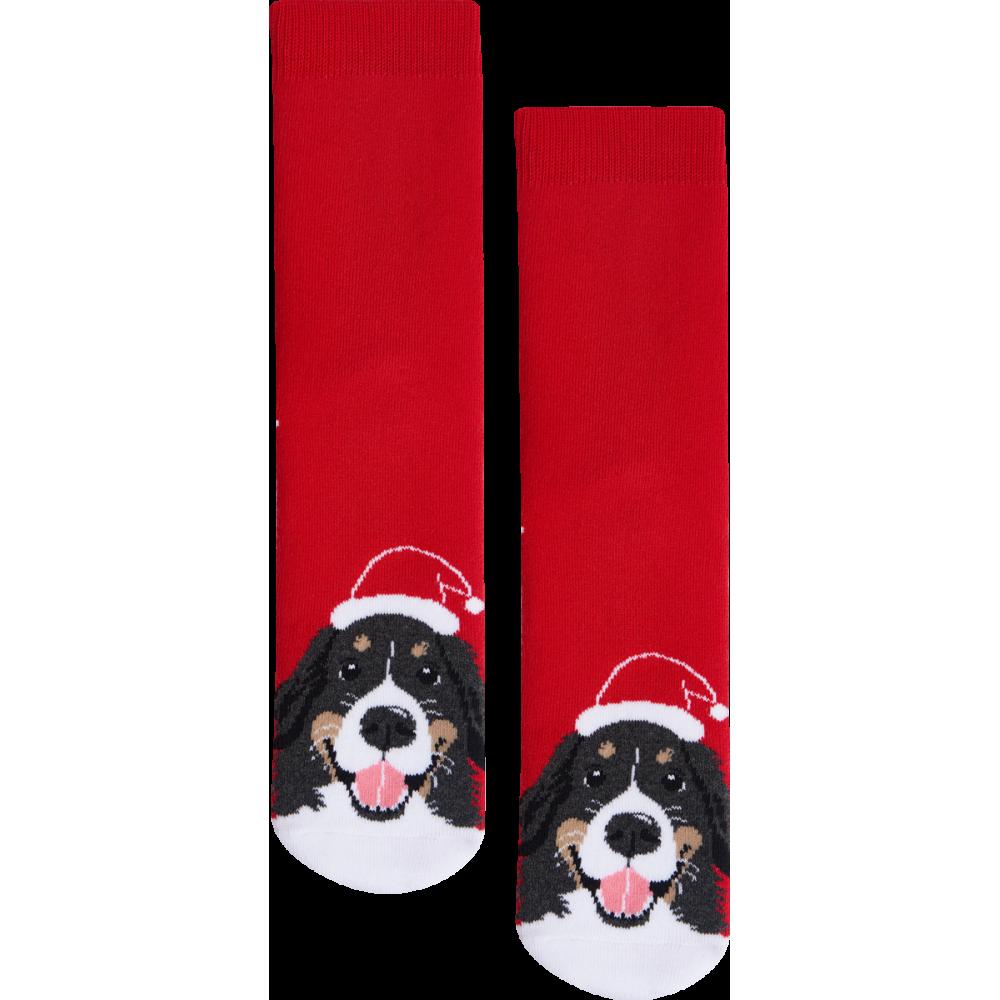 """Moterų kojinės """"Kalėdinis zenenhundas"""" 3"""